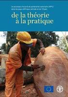 Le processus Accord de partenariat volontaire (APV) dans les pays d'Afrique centrale et de l'Ouest: de la théorie à la pratique