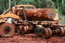Forum international sur le développement durable de la filière bois du Bassin du Congo