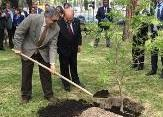 """22-4-16 FAO joins the """"Trees for the Earth"""" campaign"""