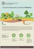 Dryland Restoration Initiative Platform (DRIP)