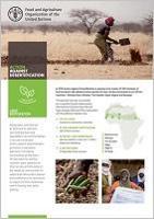 Action Against Desertification - Land Restoration