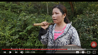 Boosting income and forest cover in Viet Nam