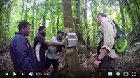 Papua New Guinea: First National Forest Inventory and Biodiversity Survey