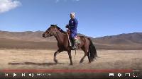 Protección a los bosques en Mongolia