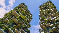 Forests and Sustainable Cities: International Day of Forests 2018