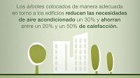 Beneficios de los árboles urbanos