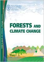 FAO's work on climate change: Forests and Climate Change