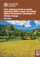 From reference levels to results reporting: REDD+ under the United Nations Framework Convention on Climate Change