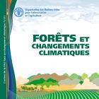L'action de la FAO face au changement climatique: Forêts et changements climatiques