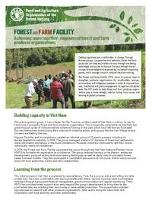 Forest and Farm Facility factsheet: Achieving more together - empowered forest and farm producer organizations