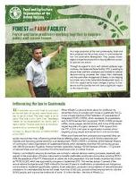 Forest and Farm Facility factsheet: Forest and farm producers working together to improve policy and secure tenure