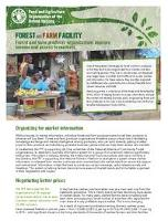 Forest and Farm Facility factsheet: Forest and farm producer organizations improve income and access to markets