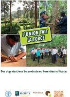L'union fait la force: Des organisations de producteurs forestiers efficaces