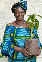 Seeking an extraordinary forest hero - nominations open for the 2014 Wangari Maathai Award