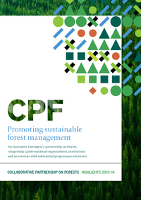Celebrating 15 years of the Collaborative Partnership on Forests' achievements