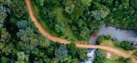 Collaborative Partnership on Forests calls for halt to deforestation