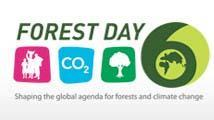 Forest Day 6: Living landscapes, solutions for a sustainable world
