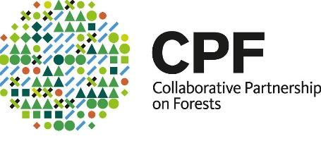 Achievements of the Collaborative Partnership on Forests presented at UNFF10