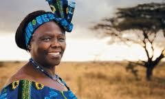 En busca de una personalidad extraordinaria que trabaje en favor de los bosques - abiertas la nominaciones para el Premio Wangari Maathai 2015