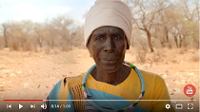 Help raise awareness on the importance of the world's dryland forests