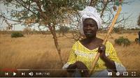 Inversión de la tendencia de la desertificación en África