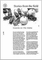 Stories from the field: Insects on the menu