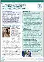 """Der Informations-Leitfaden """"Der Beitrag von Insekten für Nahrungssicherung, Lebensunterhalt und Umwelt"""""""