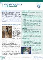 昆虫の食糧保障、暮らし そして環境への貢献 / The contribution of insects to food security, livelihoods and the environment