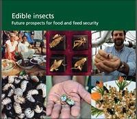 Edible insects publication now available as e-book