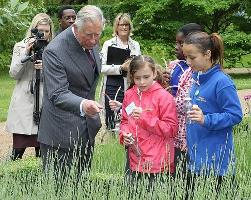 National Insect Week 2012 - Children sample edible insects