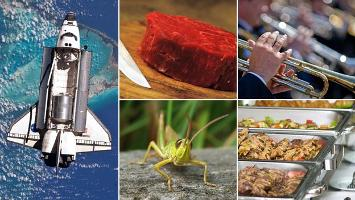 Future foods: What will we be eating in 20 years' time?