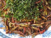 Insect farming maybe a way forward for more protein rich food in Asia