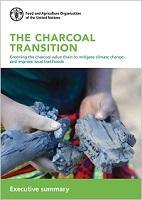 The charcoal transition: Executive summary