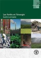 Les forêts et l'énergie: Questions principales
