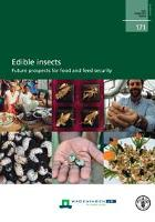 New publication: Edible insects - Future prospects for food and feed security