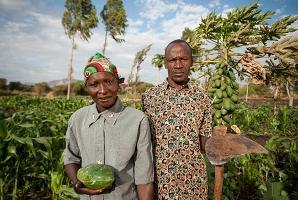Foto con árboles de papaya en Kenya es la venecedora del Concurso fotográfico: nutre los bosques para el futuro