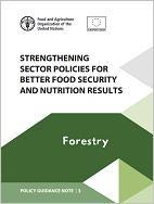 Policy Guidance Note 3: Strengthening Sector Policies for Better Food Security and Nutrition Results: Forestry