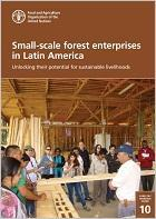 Small-scale forest enterprises in Latin America: Unlocking their potential for sustainable livelihoods