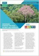 Sustainable Forestry for Food Security and Nutrition: Policy recommendations