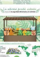 La actividad forestal sostenible a favor de la seguridad alimentaria y la nutrición