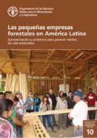 Las pequeñas empresas forestales en América Latina: aprovechando su potencial para generar medios de vida sostenibles