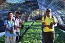 بوليفيا نحو صناعة جديدة حلوة