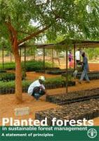 Los bosques plantados en la ordenación forestal sostenible - Declaración de principios (en inglés)