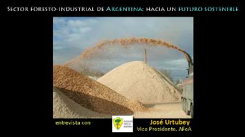 Sector foresto-industrial de Argentina, invertiendo en un futuro sostenible