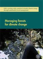La gestión de los bosques ante el cambio climático- principales cuestiones