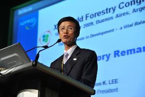 En attendant Copenhague 2009, le CFM adresse un message fort sur changement climatique et forêts à COP15