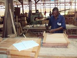 Vers une stratégie de promotion de l'industrie forestière dans le Bassin du Congo