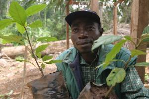 Programme d'appui ACP-FLEGT: Quatrième appel à proposition