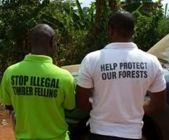 Programme UE FAO FLEGT: Premier appel à propositions