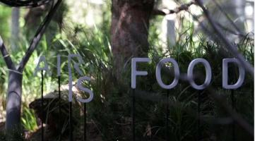 FAO and Austria reveal forest pavilion for Earth Day